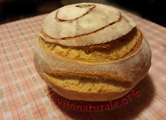 Ricetta Pane Kamut.Pane Con Farina Di Kamut E Lievito Naturale O Pasta Madre